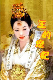 冷王的宠妃1