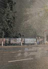 那個香樟樹下的雨天
