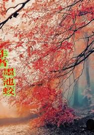 浪子江湖梦