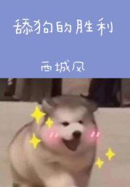 舔狗的胜利