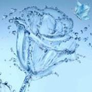 六月的water