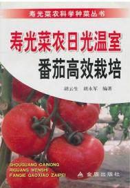 寿光菜农日光温室番茄高效栽培