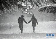 塞尔号之孤影傲雪