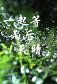 一起等雨后天晴