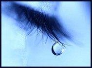不悔唯一之泪
