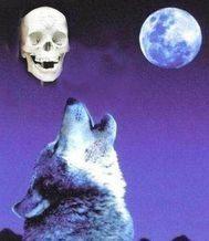 狼言之骷髅传奇