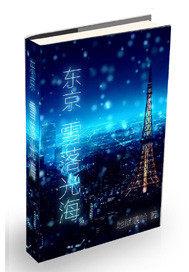 东京雪落光海