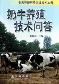 奶牛养殖技术问答