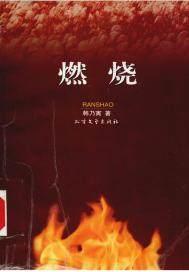 燃烧(出版)
