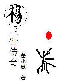 杨三针传奇