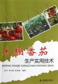 大棚番茄生产实用技术