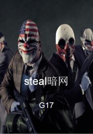 steal暗网