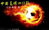 中国足球回忆录