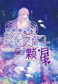 EXO之第十三颗星