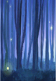 妖精的森林