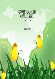 李若冰文集(第二卷)-下