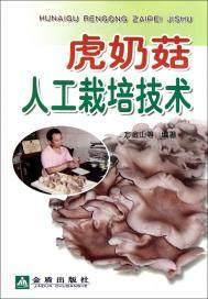 虎奶菇人工栽培技术