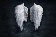 长着翅膀的怪物