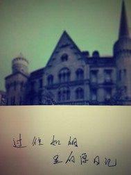 过往如烟里的厚日记