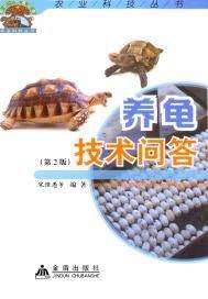 养龟技术问答