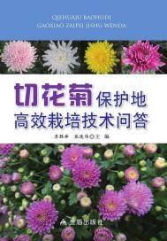 切花菊保护地高效栽培技术问答