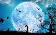 月亮下的时尚之夜